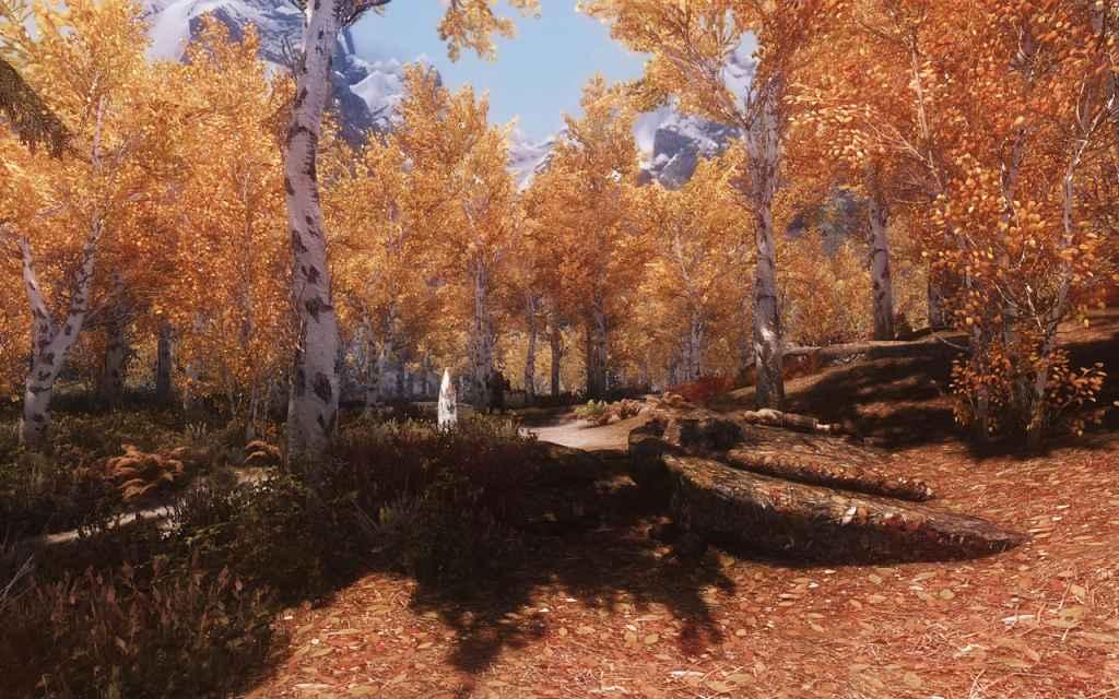 Мод Skyrim — ENB конфиг «Tundra»