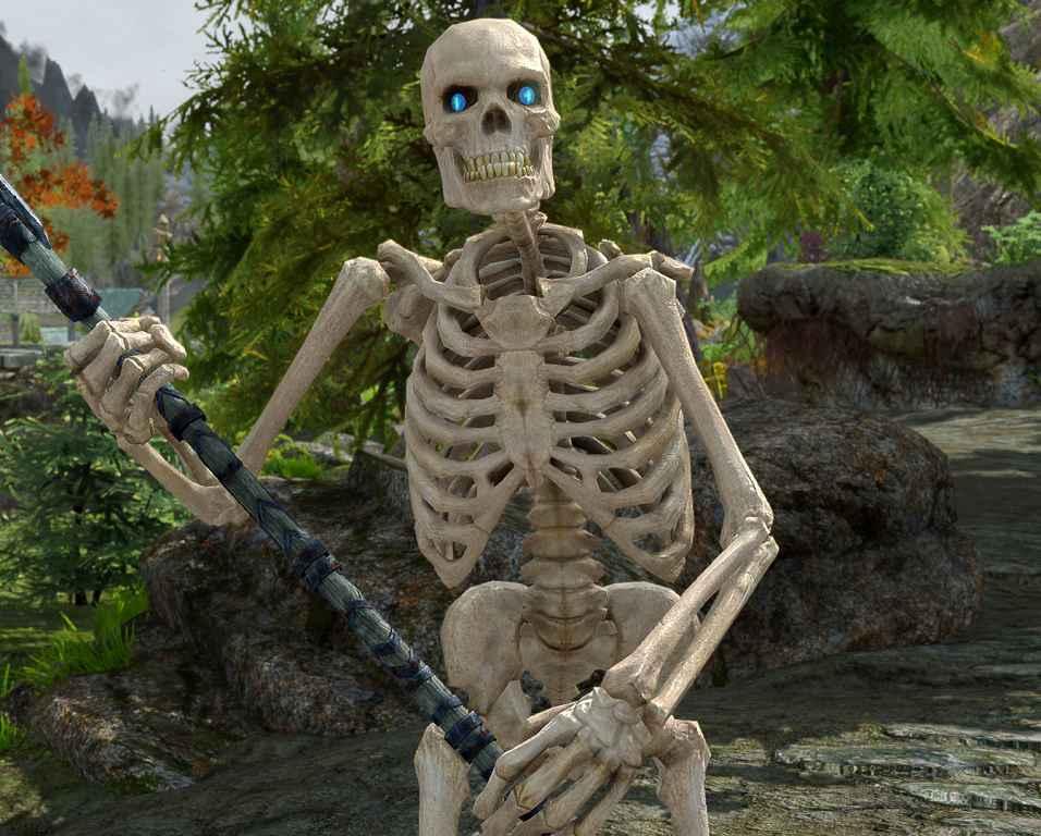 Мод Skyrim — Ретекстур Скелетов