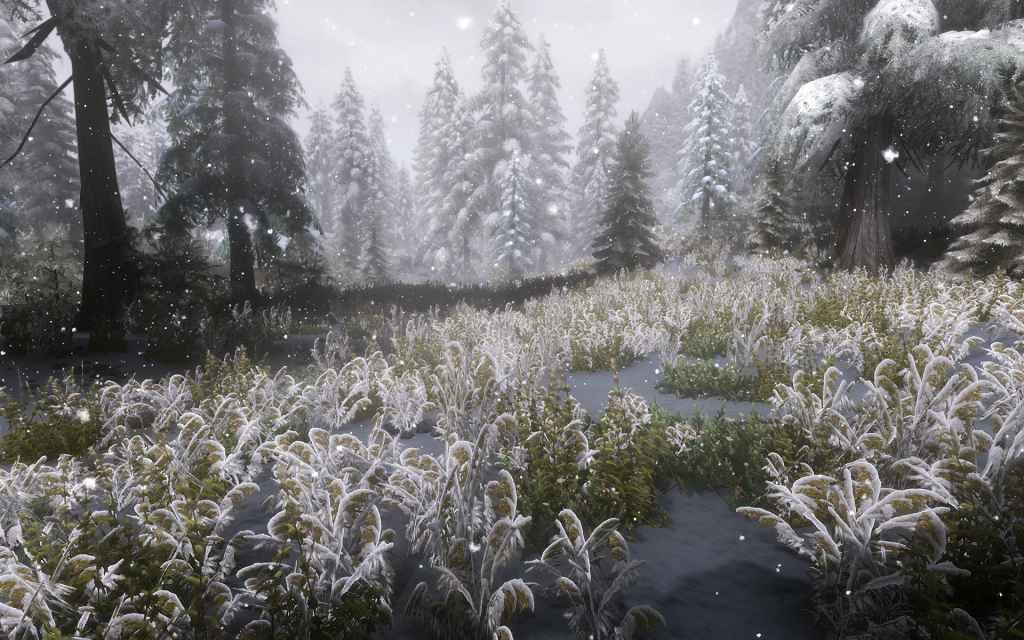 Skyrim — Трава в снеге