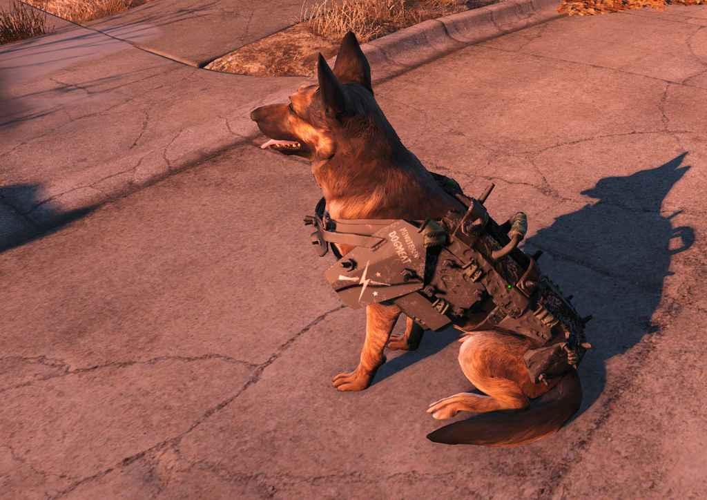 Мод Fallout 4 — Броня Минитменов для Псины (Dogmeat Minutemen Armor)