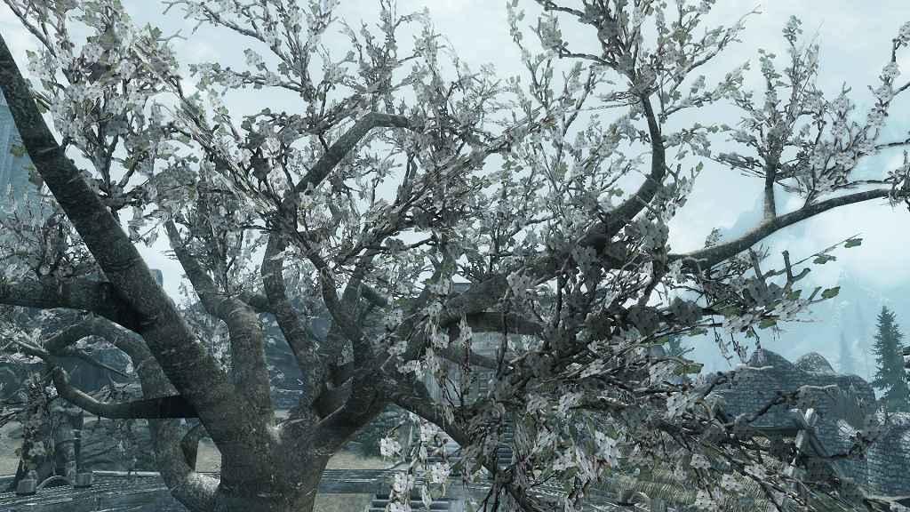 Skyrim — Цветущие Лепестки Деревьев