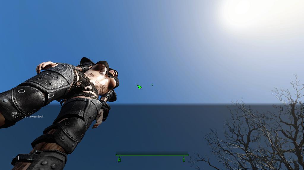 Мод Fallout 4 — Большой бюст и большая задница