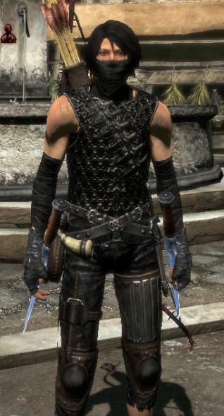 Мод Dragons Dogma — Более темная одежда Ассасина