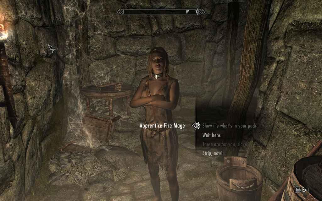 Мод Skyrim — Система рабства (18+)