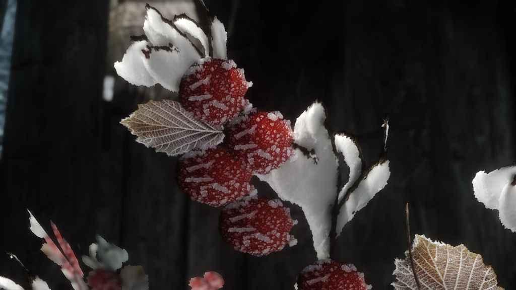 Мод Skyrim — Красные снежноягодники