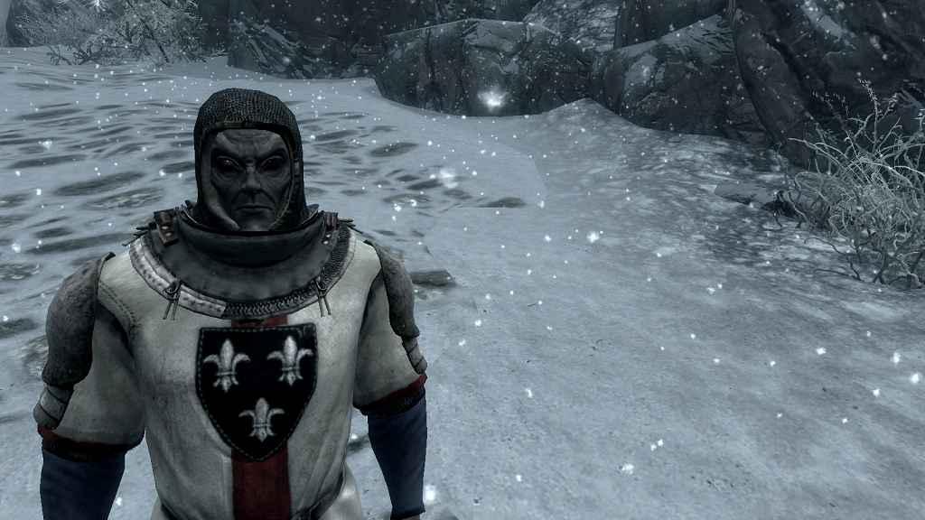 Мод Skyrim — Доспех солдата — Ведьмак