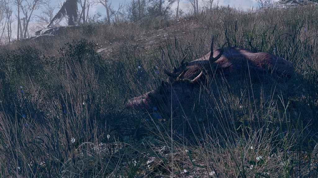 Мод Fallout 4 — Весна в Содружестве