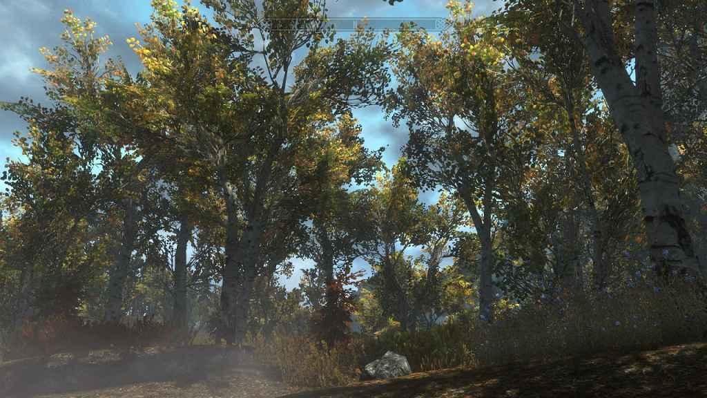 Мод Skyrim — Ретекстур всей флоры в игре / Skyrim Flora Overhaul