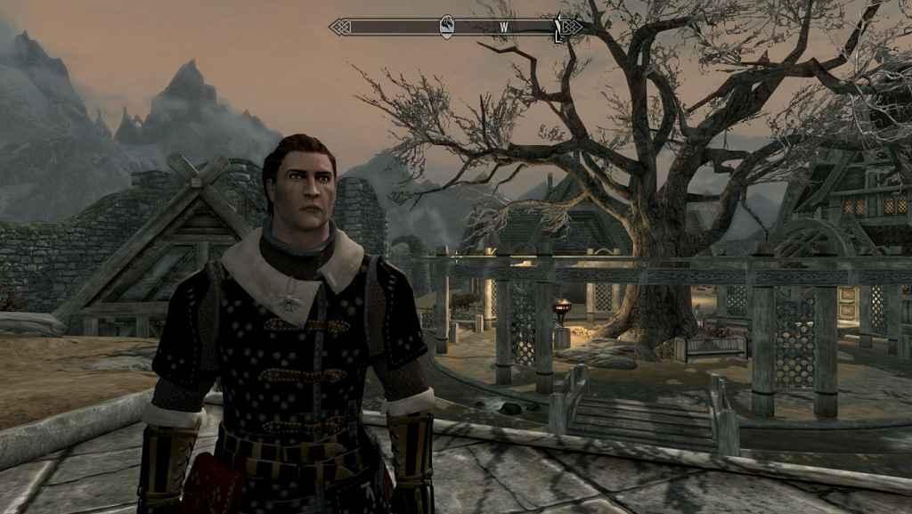 Мод Skyrim — Witcher 3 Cat Armor