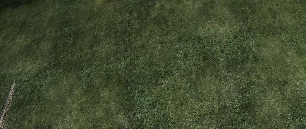 Мод Skyrim — 4к текстуры травы