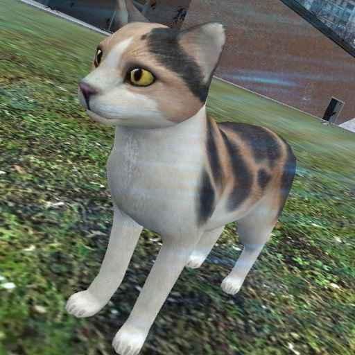 Мод Garrys Mod 13 — Модель кота