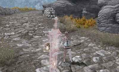 Мод Skyrim — Спутник Боевой Меч