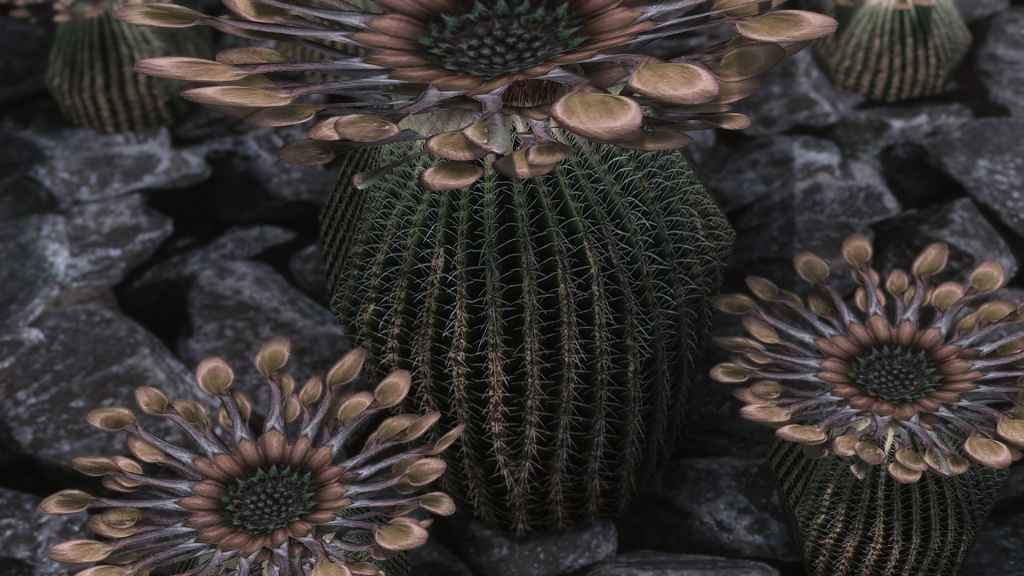 Мод Skyrim — Реплейсер кактусов